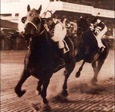 match race